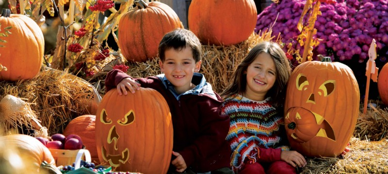5 idées faciles pour un Halloween effrayant !